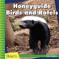 Honeyguide Birds and Ratels