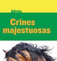 Crines Majestuosas (Majestic Manes): Caballo (Horse)