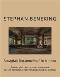 Stephan Beneking: Amygdala Nocturne No. 1 in a Minor: Beneking: Booklet with Piano Scores / Sheet Music of Amygdala Nocturne No. 1 in a