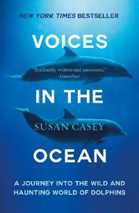 Voices in the ocean - a journey into the wild and haunting world of dolphin