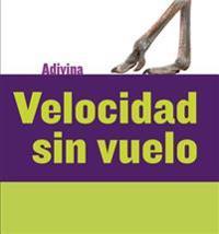 Velocidad Sin Vuelo (Fast and Flightless): Avestruz (Ostrich)