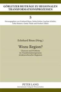 Wozu Region?: Chancen Und Probleme Im Transformationsprozess Strukturschwacher Regionen