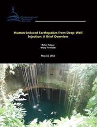 Human-Induced Earthquakes from Deep-Well Injection: A Brief Overview