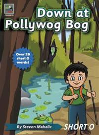 Down at Pollywog Bog