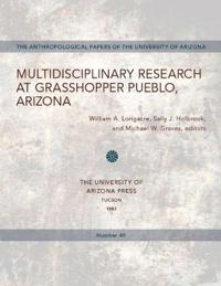 Multidisciplinary Research at Grasshooper Pueblo Arizona