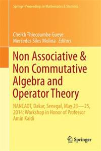 Non-Associative and Non-Commutative Algebra and Operator Theory