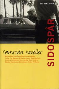 Sidospår : samtida noveller