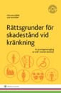 Rättsgrunder för skadestånd vid kränkning : en praxisgenomgång av mål i svensk domstol