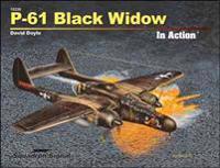 P-61 Black Widow in Action