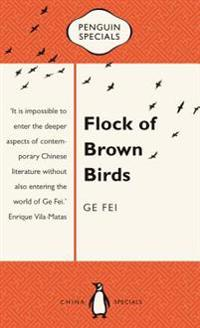 Flock of Brown Birds