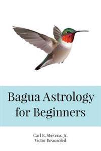Bagua Astrology for Beginners