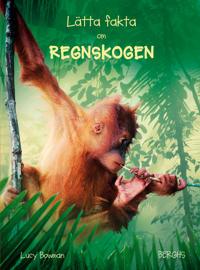 Lätta fakta om regnskogen