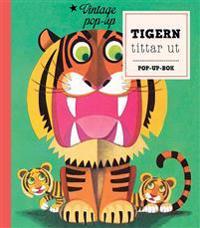 Tigern tittar ut