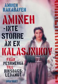 Amineh - inte större än en kalasjnikov : från peshmerga till riksdagsledamot