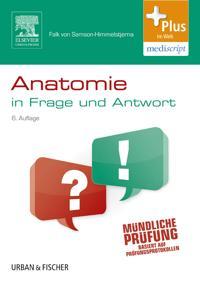 Anatomie in Frage und Antwort