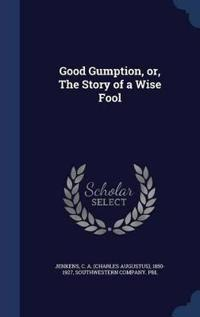 Good Gumption, Or, the Story of a Wise Fool