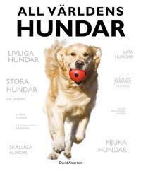 All världens hundar