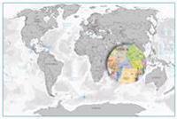 Scratch off  map världen silver väggkarta i tub