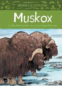 Animals Illustrated: Muskox (English)