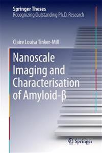 Nanoscale Imaging and Characterisation of Amyloid-ß