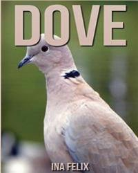 Dove: Children Book of Fun Facts & Amazing Photos on Animals in Nature - A Wonderful Dove Book for Kids Aged 3-7
