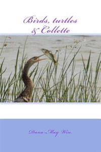 Birds, Turtles and Collette