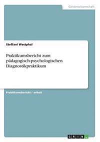 Praktikumsbericht Zum Padagogisch-Psychologischen Diagnostikpraktikum