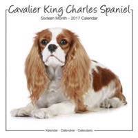 Cavalier King Charles Studio Calendar 2017