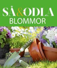 Blommor – Så & odla – Handboken för att lyckas med din skörd