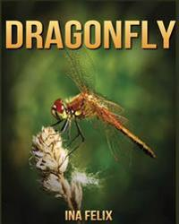 Dragonfly: Children Book of Fun Facts & Amazing Photos on Animals in Nature - A Wonderful Dragonfly Book for Kids Aged 3-7