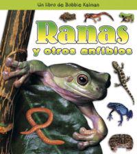 Ranas Y Otros Anfibios/ Frogs and Other Amphibians