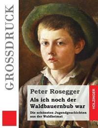 ALS Ich Noch Der Waldbauernbub War (Grodruck): Die Schonsten Jugendgeschichten Aus Der Waldheimat