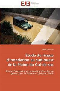 Etude Du Risque d'Inondation Au Sud-Ouest de la Plaine Du Cul-De-Sac