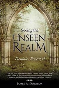 Seeing the Unseen Realm