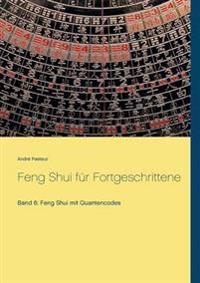 Feng Shui Fur Fortgeschrittene