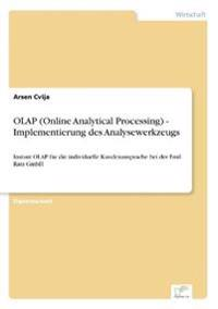 OLAP (Online Analytical Processing) - Implementierung Des Analysewerkzeugs