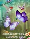 Birds and Butterflies Coloring Book: A Lovely Coloring Book on Birds & Butterflies. This A4 50 Page Book Comprises of 25 Images of Butterflies and 25