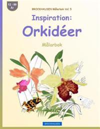 Brockhausen Malarbok Vol. 5 - Inspiration: Orkideer: Malarbok