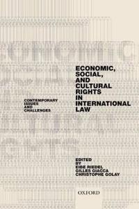 Economic, Social, and Cultural Rights in International Law