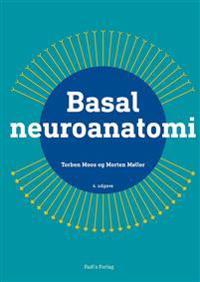 Basal neuroanatomi