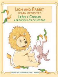 Lion & Rabbit Learn Opposites / Leon y Conejo Aprenden Los Opuestos