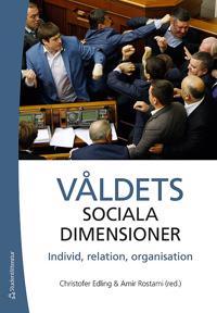 Våldets sociala dimensioner - Individ, relation, organisation