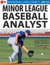 2016 Minor League Baseball Analyst