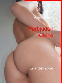 Förbjuden Kärlek: En erotisk novell