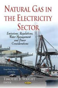 Natural Gas in the Electricity Sector