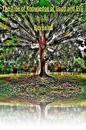 The Tree of Knowledge of Good and Evil Revealed