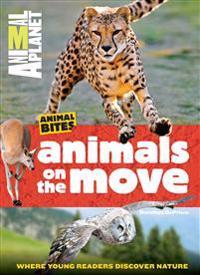 Animals on the Move (Animal Planet Animal Bites)