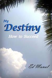 My Destiny: How to Succeed