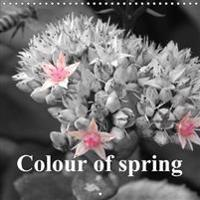 Colour of Spring 2017