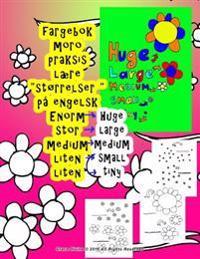 Fargebok Stor Medium Liten Laere Storrelser Pa Engelsk Til Barn Alle Hvem Onsker a Laere Engelsk